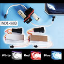 NX-H8B - H8,  BMW ANGEL BULB BLUE Twin Set of Bulbs by NAXOS